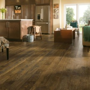 Armstrong Flooring Forest Treasure Rigid Core – Brown