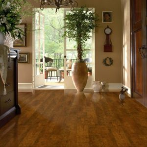 Armstrong Flooring Laminate  Candied Cherry
