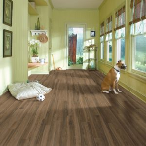 Armstrong Flooring Laminate  Exotic Olive Ash