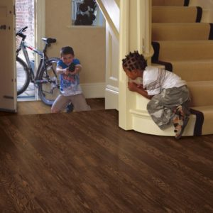 Armstrong Flooring Laminate Forestwood Ash